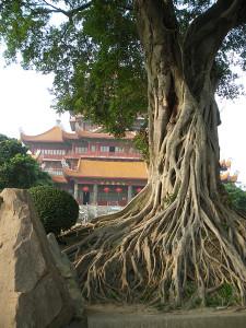 xishan-temple